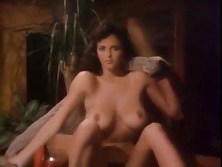 Playboy Wringing wet & Wild